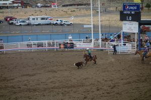 Cody Nite Rodeo